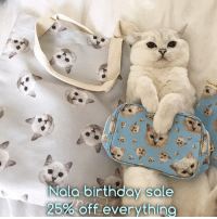 """It's my birthday month! Use coupon code """"happybirthday"""" for 25% off everything at www.nalacat.com: Nalo birthday sale  25%Offeverythino It's my birthday month! Use coupon code """"happybirthday"""" for 25% off everything at www.nalacat.com"""