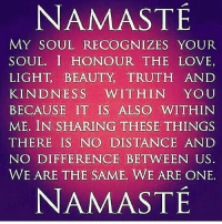 Namaste My Soul Recognizes Your Soul I Honour The Love Light Beauty