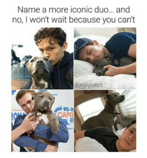 Corgi, Target, and Tumblr: Name a more iconic duo... and  no, I won't wait because you can't  esingingholand  ATION  95-1  CAPT  Fl  l Breakfa generic-housewife:  I raise you Antoni Porowski and his corgi.
