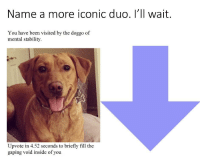 Iconic, Been, and Doggo: Name a more iconic duo. I'll wait.  You have been visited by the doggo of  mental stability.  Upvote in 4.52 seconds to briefly fill the  gaping void inside of you <p>Not 🅱️ank anymore🙅‍♂️🙅‍♂️🙅‍♂️🙅‍♂️🙅‍♂️</p>