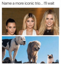 Earth, Dank Memes, and Iconic: Name a more iconic trio... I'll wait Or any other three things on earth that are grouped together