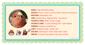 """birdhism:  Get to know more about my sweet boi, Cody. You can read his full story here: birdhism.com/pages/about-cody: NAME: Cody McFluffenchops  SPECIES: Peach-faced Lovebird (Red-suffusion Mutation)  BIRTHDAY: November 21st  JOBS: Birdhisattva, Magical Bird, Tiny Nurse  FAVORITE FOOD: Millet, dried mango  FAVORITE SONG: """"Lonely Rolling Star"""" Saki Kabata  HOBBIES: Going on adventures  LIKES: Making friends, cheek rubs  DISLIKES: Sharing his warm lamp with Lolita  DREAM: To teach the world to be nice to birds  birdhism.com birdhism:  Get to know more about my sweet boi, Cody. You can read his full story here: birdhism.com/pages/about-cody"""