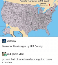 America, Dad, and Memes: Name for Hamburger by U.S County  Hamburger:  Steamed Ham:  datarep  Name for Hamburger by U.S County  rad-ghost-dad  yo east half of america why you got so many  counties bc Land Ordinance of 1785 probs - Max textpost textposts