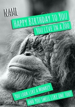birthday monkey – theroar.club: NAME  HAPPY BIRTHDAY TO YOU  YOU LIVE IN A ZOO  YOU LOOK LIKE A MONKEY  AND YOU SMELL LIKE ONE TOO! birthday monkey – theroar.club