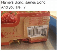 James Bond, Memes, and 🤖: Name's Bond, James Bond  And vou are...?  rry Strawberry  SALINAS, CA 93906  8777  0) 032  PRODUCT OF ISA 😂😂 (@pubity)