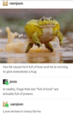 ".: namjoon  hes fat cause he's full of love and he is running  to give everybody a hug  jimin  In reality, frogs that are ""full of love"" are  actually full of poison  namjoon  Love arrives in many forms ."