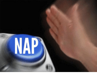 Inconvenience, Girl Memes, and Nap: NAP *The slightest inconvenience*  Me: https://t.co/nO5s3khRnc