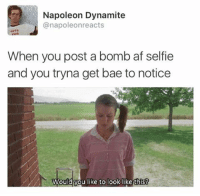 "Af, Bae, and Bailey Jay: Napoleon Dynamite  anapoleonreacts  When you post a bomb af selfie  and you tryna get bae to notice  Would you like to look likethis! K guys we hit 900 likes on the "" you can't marry them they don't know u"" pic WHAT MOST OF MY PICS DONT EVEN HAVE 200 napoleonreacts"
