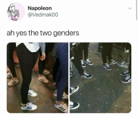 Memes, 🤖, and Yes: Napoleon  @Vedmakoo  ah yes the two genders Hay