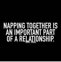 THIS IS THE MOST IMPORTANT relatable rebel rebelcircus quotes lol funny humor memes rebelcircusquotes love inspo goals circus photooftheday instalike picoftheday instadaily followme bestoftheday: NAPPING TOGETHER IS  AN IMPORTANT PART  OF A RELATIONSHIP THIS IS THE MOST IMPORTANT relatable rebel rebelcircus quotes lol funny humor memes rebelcircusquotes love inspo goals circus photooftheday instalike picoftheday instadaily followme bestoftheday