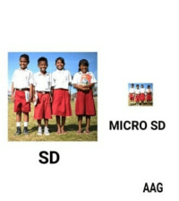 Indonesian (Language), Micro, and Aag: NaR  MICRO SD  SD  AAG