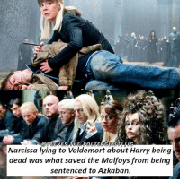 Q-Malfoys or the Weasleys? Tag a friend! harrypotter potterhead: Narcissa lying to Voldemort about Harry being  dead was what saved the Malfoys from being  sentenced to Azkaban. Q-Malfoys or the Weasleys? Tag a friend! harrypotter potterhead
