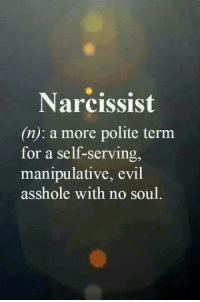 manipulative: Narcissist  (n): a more polite term  for a self-serving,  manipulative, evil  asshole with no soul