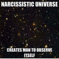 "Memes, Narcissist, and Narcissistic: NARCISSISTIC UNIVERSE  CREATES MAN TO OBSERVE  ITSELF ""Through our eyes, the universe is perceiving itself. Through our ears, the universe is listening to its harmonies. We are the witnesses through which the universe becomes conscious of its glory, of its magnificence.""  ― Alan W. Watts  http://pantheism.com/about/luminaries/alan-watts/"