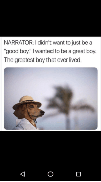 """Good, Believable, and Boy That: NARRATOR: I didn't want to just be a  """"good boy."""" I wanted to be a great boy.  The greatest boy that ever lived. <p>Believable</p>"""