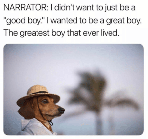 "Memes, Good, and Boy That: NARRATOR: I didn't want to just be a  ""good boy."" I wanted to be a great boy.  The greatest boy that ever lived. the greatest"