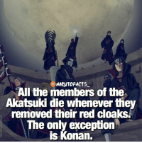 Once their cloak was damaged-removed, they died 😳| All of Akatsuki vs Naruto, who would win? 😱 | follow @borutofacts_ @minato.official @itechimemes: NARUTO FACTS  All the members of the  Akatsuki die whenever the  removed their red cloaks.  e only exception  is Konan, Once their cloak was damaged-removed, they died 😳| All of Akatsuki vs Naruto, who would win? 😱 | follow @borutofacts_ @minato.official @itechimemes