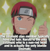 And now we have Himawari and Boruto 🤔 | Naruto as blonde or red hair? 😉: NARUTO FACTS  The Uzumaki clan member typicall  have red hair. Naruto is the onl  Uzumaki who is a non-red hea  and is actually the only blonde  Uzumaki. And now we have Himawari and Boruto 🤔 | Naruto as blonde or red hair? 😉