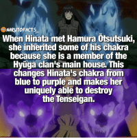 Memes, Blue, and House: NARUTOFACTS  When Hinata met Hamura Otsutsuki,  she inherited some of his chakra  because she is a member of the  HvTga clan's main house. This  changes Hinata's chakra from  blue to purple and makes her  uniquely able to destroy  the Tenseigan. She's Boss level now 👊🏻 | So Boruto and Himawari were able to inherit both Hagoromo and Hamura's powers? 😱 | follow @minato.official @borutofacts_ @itechimemes