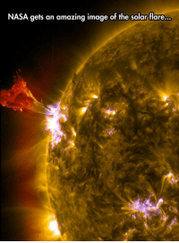 Beautiful, Club, and Nasa: NASA gets an amazing image of the solar flare... laughoutloud-club:  Solar Flares Are So Beautiful