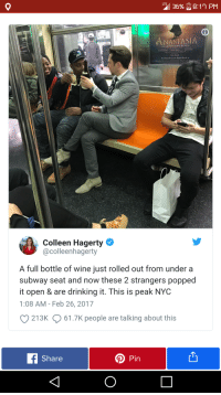 "Drinking, Subway, and Wine: NASTASIA  THE NEW BROADWAY MUSICAL  Breadusy Previeus Begin Marcb a  Colleen Hagerty  @colleenhagerty  A full bottle of wine just rolled out from under a  subway seat and now these 2 strangers popped  it open & are drinking it. This is peak NYC  1:08 AM- Feb 26, 2017  213K  61.7K people are talking about this  Share  DPin <p>Happy accidents :D via /r/wholesomememes <a href=""http://ift.tt/2Fbxfx9"">http://ift.tt/2Fbxfx9</a></p>"