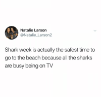 Shark, Beach, and Sharks: Natalie Larson  @Natalie_Larson2  Shark week is actually the safest time to  go to the beach because all tne sharkS  are busy being on TV (@ship)