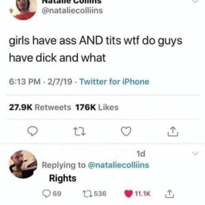 Ass, Girls, and Iphone: @nataliecolliins  girls have ass AND tits wtf do guys  have dick and what  6:13 PM- 2/7/19 Twitter for iPhone  27.9K Retweets 176K Likes  1d  Replying to @nataliecollins  Rights  69  69 t. 536 11.1K  536