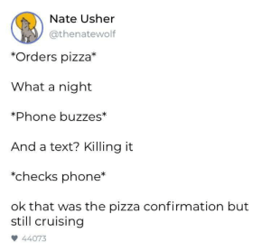 Sometimes everything goes right: Nate Usher  @thenatewolf  *Orders pizza*  What a night  Phone buzzes*  And a text? Killing it  *checks phone*  ok that was the pizza confirmation but  still cruising  44073 Sometimes everything goes right