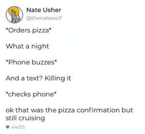 Phone, Pizza, and Usher: Nate Usher  @thenatewolf  *Orders pizza*  What a night  *Phone buzzes*  And a text? Killing it  *checks phone  ok that was the pizza confirmation but  still cruising  44073