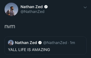 Life, Amazing, and MeIRL: Nathan Zed  @NathanZed  nvm  Nathan Zed @NathanZed.1m  YALL LIFE IS AMAZING Meirl