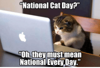 """Happy National Cat Day from Kitty Kan!  www.mykittykan.com: National Cat Day?""""  Oh, theymustmean  National Every Day."""" Happy National Cat Day from Kitty Kan!  www.mykittykan.com"""