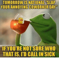Co Worker Memes: NATIONAL  YOUR ANNOVING COWORKER DAro  IF YOU'RE NOT SURE WHO  THAT IS, ID CALLIN SICK