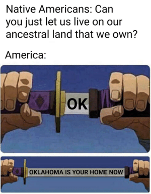 Not cool Andrew Jackson https://t.co/bTY6SC6YGl: Native Americans: Can  you just let us live on our  ancestral land that we own?  America:  OK  00  OKLAHOMA IS YOUR HOME NOW Not cool Andrew Jackson https://t.co/bTY6SC6YGl