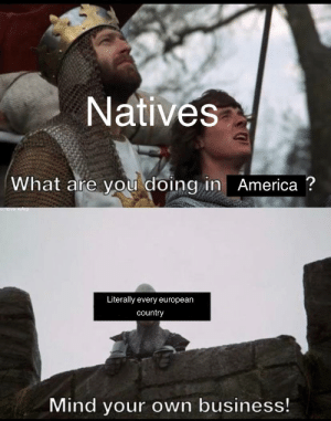 America, Reddit, and Business: Natives  What are you doing in America ?  unova WArp  Literally every european  country  Mind your own business! I fart in your general direction!