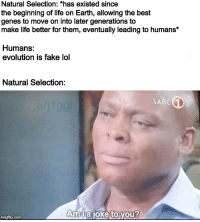 Fake, Life, and Lol: Natural Selection: *has existed since  the beginning of life on Earth, allowing the best  genes to move on into later generations to  make life better for them, eventually leading to humans*  Humans:  evolution is fake lol  Natural Selection:  SABC  Amlajoke toyou?  imgflip.com