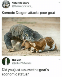 Goat, Nature, and Girl Memes: Nature Is Scary  @Thescarynature  Komodo Dragon attacks poor goat  The Don  @JackedYoTweets  Did you just assume the goat's  economic status? 😂😂😂😂😂😂