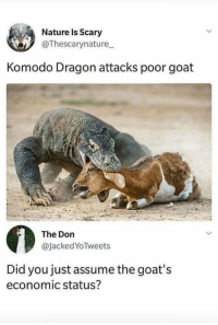 """Memes, Goat, and Nature: Nature Is Scary  @Thescarynature  Komodo Dragon attacks poor goat  The Don  @JackedYoTweets  Did you just assume the goat's  economic status? <p>How dare you via /r/memes <a href=""""https://ift.tt/2JmAV1Q"""">https://ift.tt/2JmAV1Q</a></p>"""