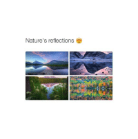 @sexualmao posts the best tweets omg I love her account 😍 @sexualmao: Nature's reflections @sexualmao posts the best tweets omg I love her account 😍 @sexualmao