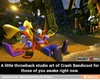 Crash Bandicoot: NAUGHTY DOG  A little throwback studio art of Crash Bandicoot for  those of you awake right now.  Reinvented by VideoG  for iFunny