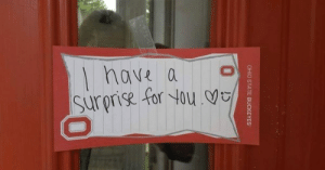 Dude, Troll, and Tumblr: nave a  surprise for You memehumor:  This Dude Went That Extra Mile to Troll His Girlfriend in the Most Romantic Way Possiblehttp://memehumor.tumblr.com