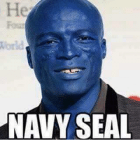 Send us your memes: NAVY SEAL Send us your memes