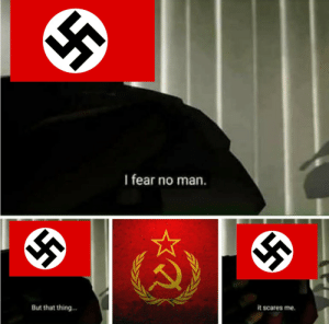 Nazi Germany after betraying the Soviet Union: Nazi Germany after betraying the Soviet Union
