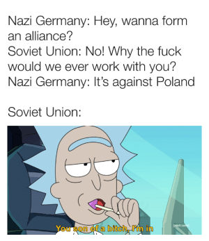 Bitch, Work, and Adult Swim: Nazi Germany: Hey, wanna form  an alliance?  Soviet Union: No! Why the fuck  would we ever work with you?  Nazi Germany: It's against Poland  Soviet Union:  [adult swim)  You son of a bitch, Pm in Nothing brings Germans and Russians together quite like a good invasion of Poland
