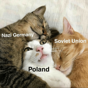Memes, Germany, and Historical: Nazi Germany  Soviet Union  Poland historical memes
