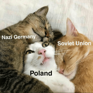 Bae, Dank, and Memes: Nazi Germany  Soviet Union  Poland Poland is bae for nazis by Gopal_Pandey167 MORE MEMES