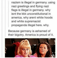 Memes, Propaganda, and 🤖: nazism is illegal in germany. using  nazi greetings and flying nazi  flags is illegal in germany. why  isnt the kkk unconstitutional in  america. why arent white hoods  and white supremacist  propaganda illegal here. why.  Because germany is ashamed of  their bigotry. America is proud of it.