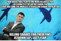 Basketball, Nba, and Yao Ming: NBA BASKETBALL PLAYER YAO MING RELEASES PSA  INCHINA TO STOP EATINGSHARK FIN  SOUPAND SAVE THE WORLD'S STRUGGLING SHARK POPULATION  KILLING SHARKS FORTHEIRFINS  ISIDOWN50% LAST YEAR <p>Yao Ming Doing It Right.</p>