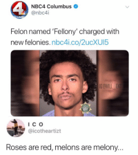 Alive, Memes, and Time: NBC4 Columbus  @nbc4i  UM  Felon named 'Fellony' charged with  new felonies. nbc4i.co/2ucXUI5  IG OWILLE  Ic o  @icotheartizt  Roses are red, melons are melony.. 😂What a time to be alive