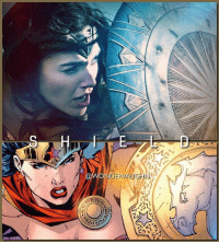 Memes, Keen, and Princess: NDERV IN THE COMICS: Princess Diana's shield is made from a remarkable ore that resists impacts, holds a keen edge and possesses incredible tensile strength. @gal_gadot @jimleeart * mywonderwoman girlpower women femaleempowerment MulherMaravilha MujerMaravilla galgadot unitetheleague princessdiana dianaprince amazons amazonwarrior manofsteel thedarkknight