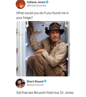 me🍩irl: NDIANA  JONES Indiana Jones  mINUTE  @IndianaJones  What would you do if you found me in  your fridge?  rollervader  Short Round  @shortround  Eat that ass like pork fried rice, Dr. Jones me🍩irl
